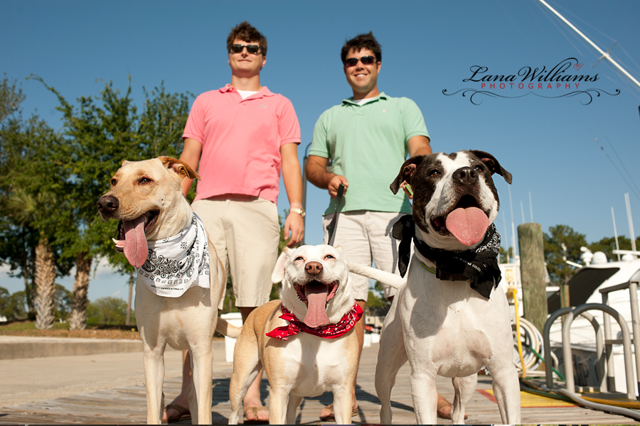 Panama City Beach Pet Photography